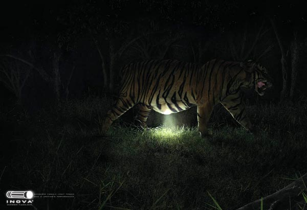 "Печатная реклама ""Tiger"", бренд: Inova, агентство: Ogilvy & Mather"