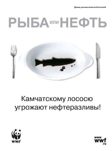 рыба или нефть